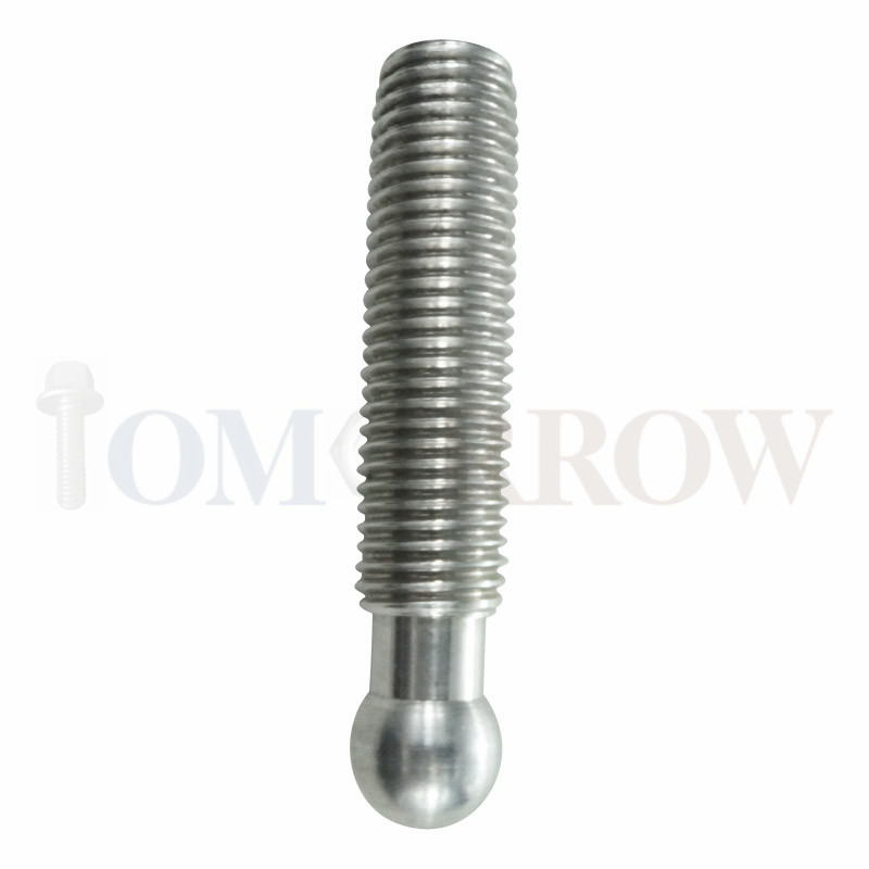 Stainless Steel Domed Bolt